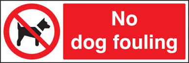 Report Litter and Dog Fouling