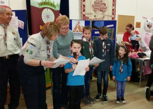 Alva Scout Group pitch